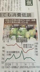 キャベツ カット野菜