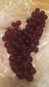 ぶどう ブドウ 葡萄
