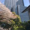 日枝神社へお礼参り